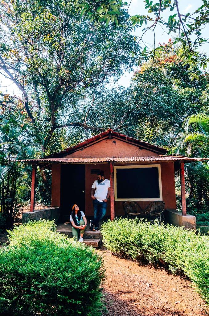 Jungle Experience_Natures Nest Goa
