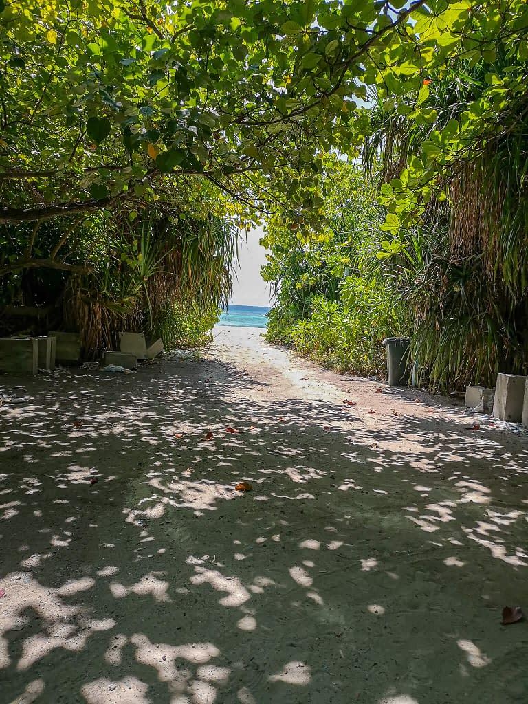 bikinibeach_rasdhoo_maldives